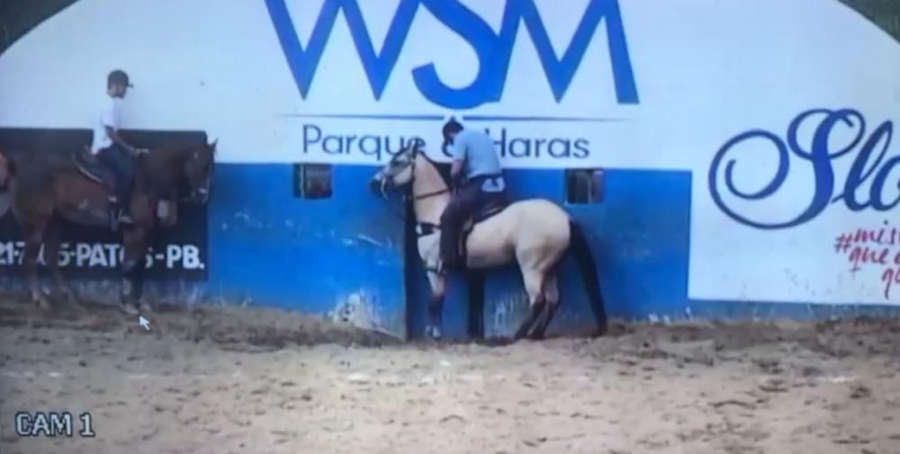 Empresário caiu de cavalo após animal perder o equilíbrio(Foto: Reprodução)
