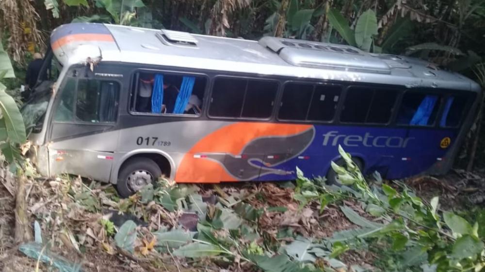 O ônibus foi parar em uma área de vegetação às margens da rodovia