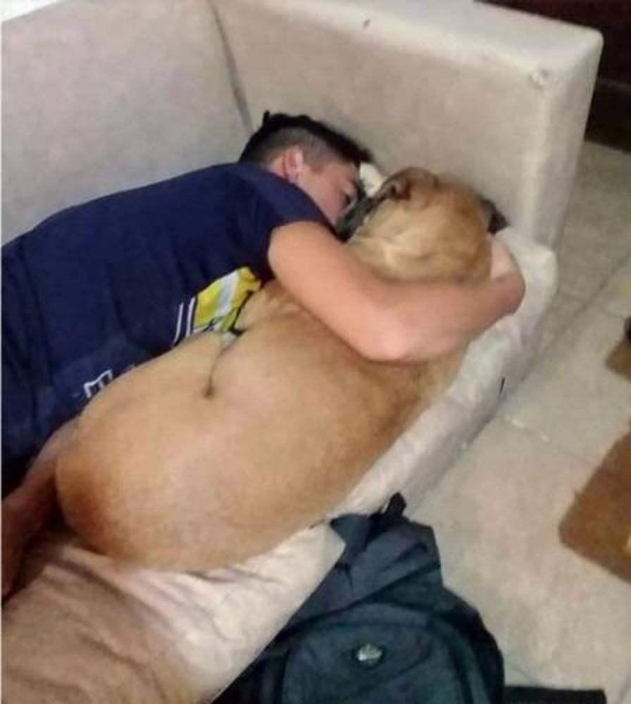 Cadela não conseguiu atendimento, teve uma parada cardíaca e morreu nos braços do dono (Foto: Reprodução/Facebook)
