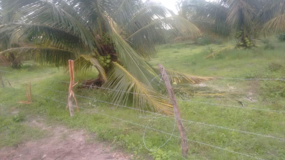 Parte da cerca de arame farpado ficou danificada após ser atingida pela descarga elétrica do raio — Foto: Arquivo pessoal